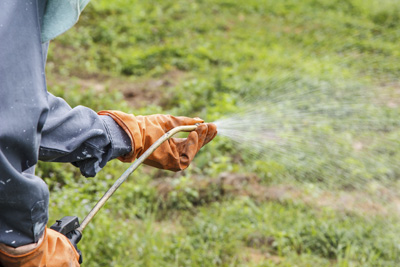Safe use of pesticides on Holiday & Residential Parks